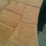 Bazenove lemy Stone Age 11
